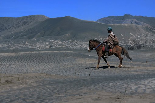 Horse, Sand, Ride, Wilderness, View, Travel, Riding