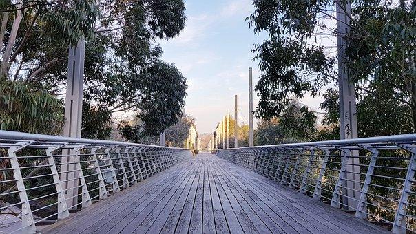 Melbourne, Boardwalk, Nature, Urban