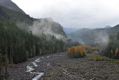 Riverbed, Indian Summer, National Park, Usa, Fog