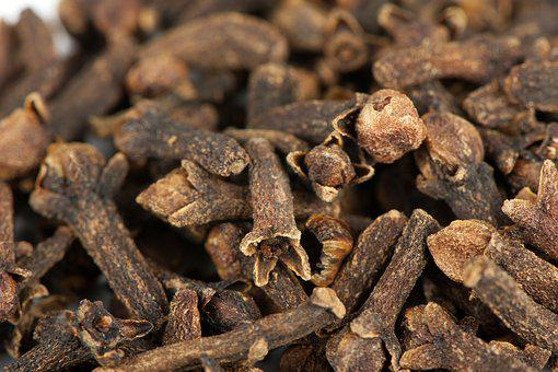 Carnation, Spice, Food, Healthy, Natural, Dried