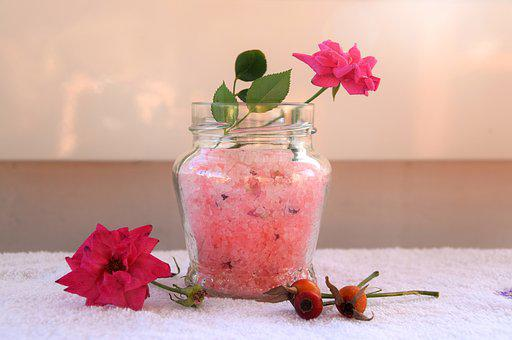 Salts, Rosa, Flowers, Spring, Romantica, Rose, Summer