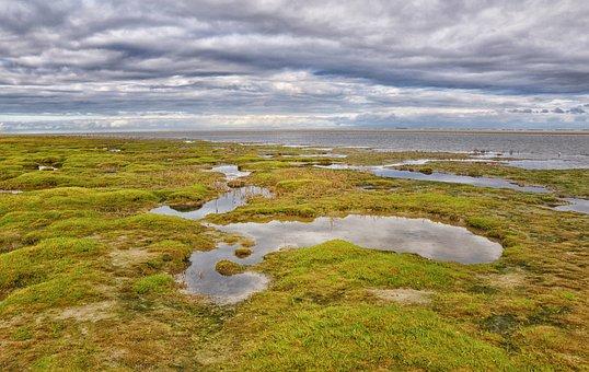 Ameland, Sea, North Sea, Clouds, Netherlands, Island