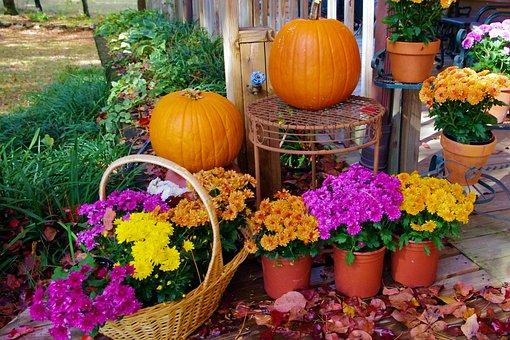 Halloween Display, Flowers, Autumn, Fall, Pot