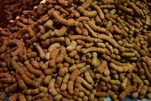 Tamarind, Plant, Vegetable, Food, Healthy, Organic