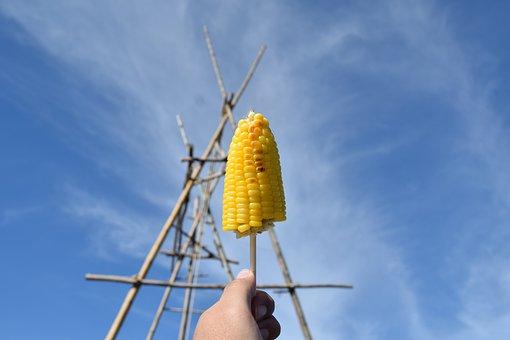 Corn, Food, Vegetable, Healthy, Plant, Whole Grains