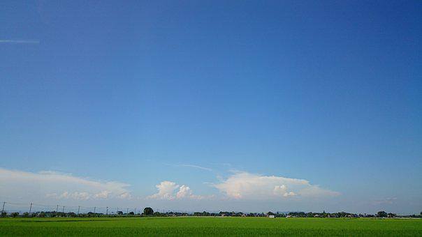 Horizon, Natural, Paddy Field, Summer, Sky, Cloud