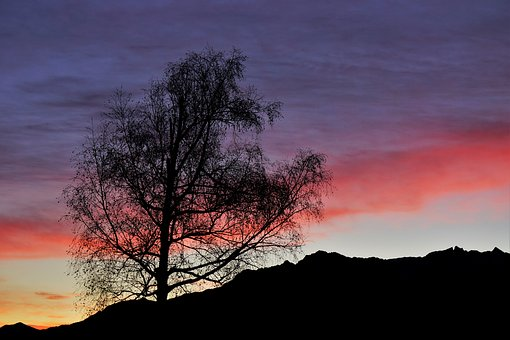 Morgenstimmung, Sunrise, Nature, Mood, Landscape, Sun