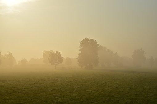 Sunrise, Morning Mist, Nature, Mood, Landscape, Sun