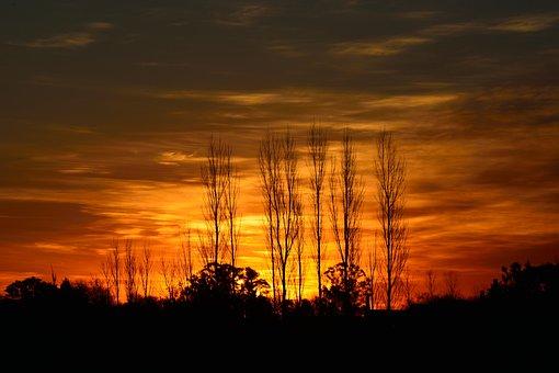 Sunset, Sun, Light, Landscape, Nature, Sky, Trees