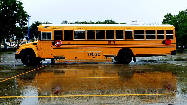 Truck, Bus, School, America, Vehicle, Transport
