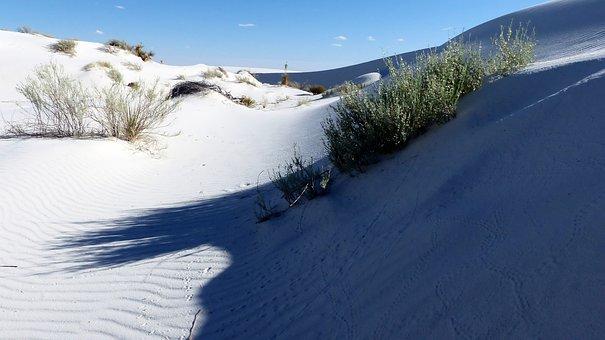 Desert, Sand, Gypsum, White, Landscape, Dunes, Dry