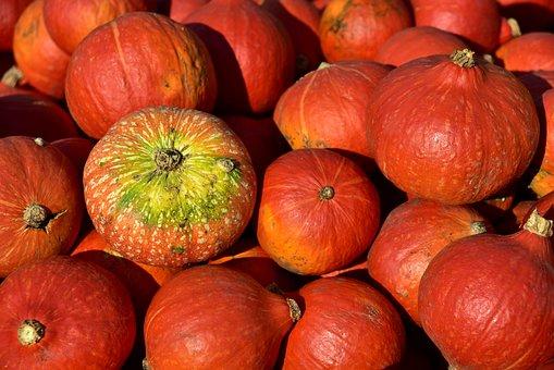 Pumpkin, Hokkaido, Orange, Autumn, Vegetables, Food