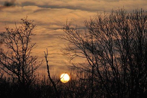 Sunset, Landscape, Trees, Sky, Nature, Clouds, Twilight