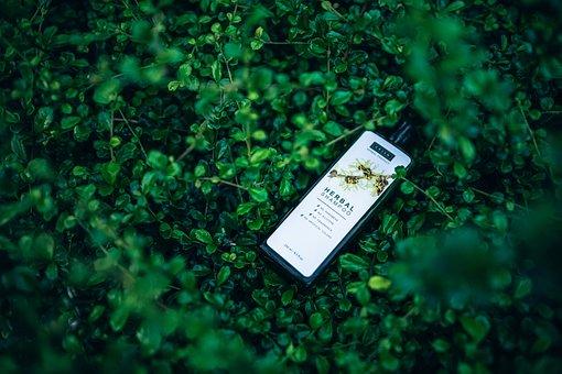 Botanical, Aromatic, Beauty, Bottle, Brand, Care, Green