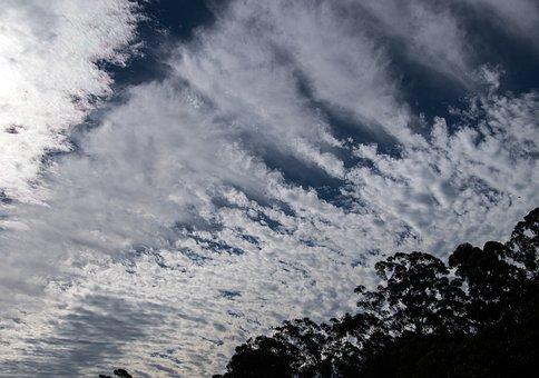 Clouds, White, Blue, Fluffy, Cirrocumulus, Cloudscape