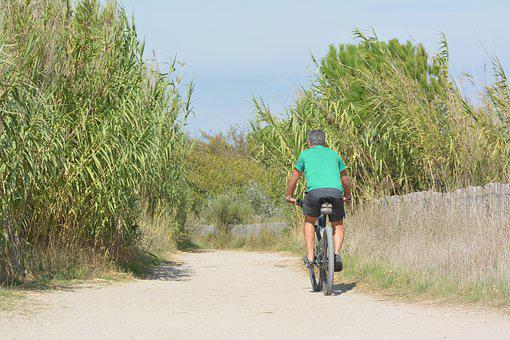 Cycle, Cycling, Bike, Wheel, Leisure, Cyclists, Nature