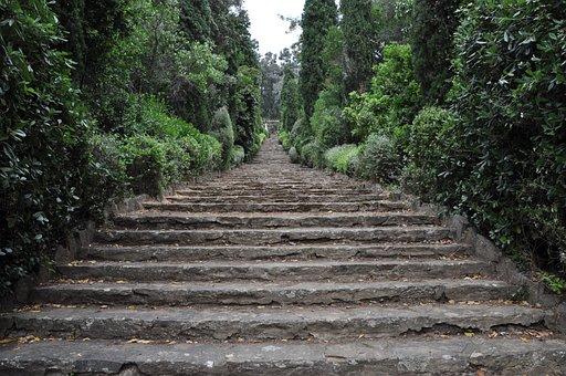 Stairs, Garden, Park, Gradually, Stair Step