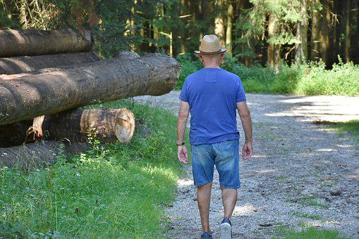 Man, Walk, Forest, Nature, Away, Go, Trees, Green