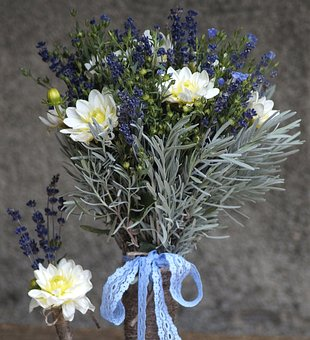 Lavender, Lein, Bouquet, Purple, Blue, Herbs