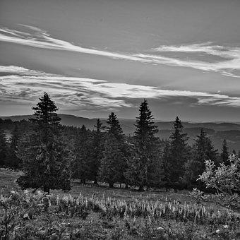 Landscape, Sw, Black And White, Nature, Rural, Mood