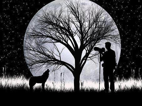 Night, Photographer, Silhouette, Design, Magical, Moon