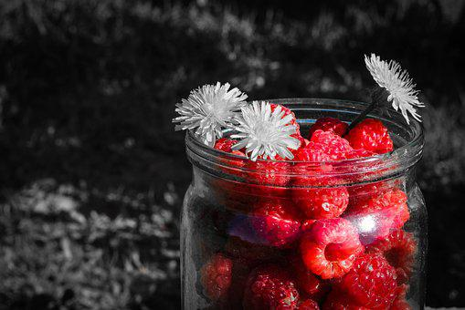 Raspberry, Berry Black, Grey, Summer, In The Summer Of