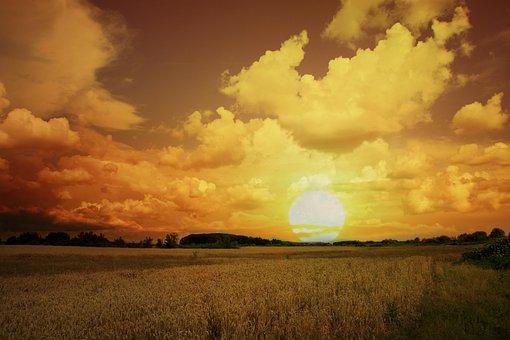 Sunset, Wheat, Sky, Cloud, Landscape, Grain, Field