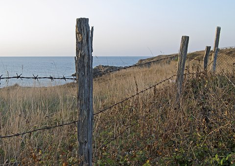 Fence Posts, Barbed Wire, Fence, Post, Weathered, Sea