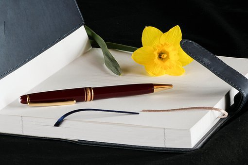 Diary, Journal, Book, Ink Pen, Paper, Pages, Account