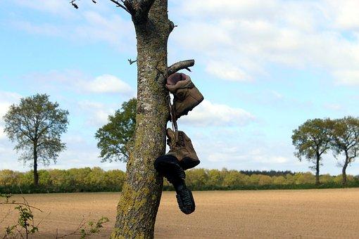 Tree, Shoes, Unusual, Strange, Brown, Hiking Shoes