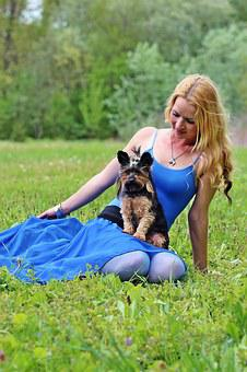 Dogs, Woman And Dog, Yorkie, Blonde Woman, Lie, Beauty