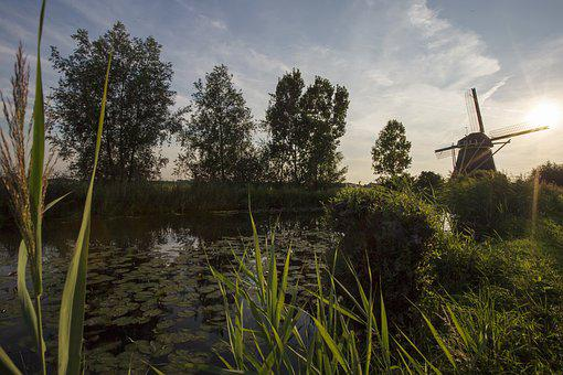 Mill, Nature, Landscape