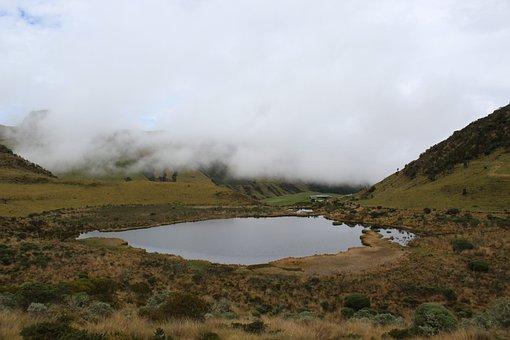 Moor, Nature, Landscape, Wetland, Manizales, Lake