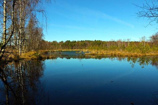 Moor, Landscape, Nature Reserve, Pietz Moor, Mirroring
