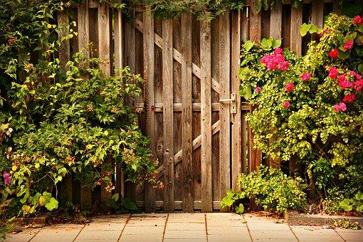 Wooden Door, Entry, Garden, Rose Bush, Pavement