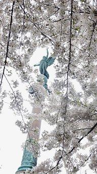 Statue, Sky, Sculpture, Figure, Cherry Blossoms, Crown