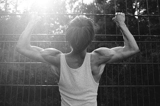 Human, Body, Move, Sun, Muscles, Grid, Caught