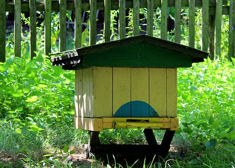 Ul, Beekeeping, Honey, Insect, Bee-keeping, To Collect