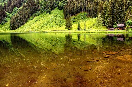 Lake Constance, Schladming, Austria, Alpine, Nature