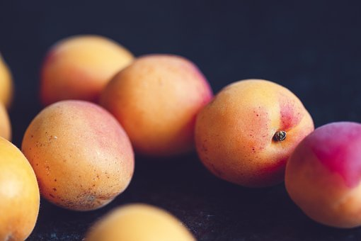 Apricot, Fruit, Healthy, Delicious, Food, Sweet