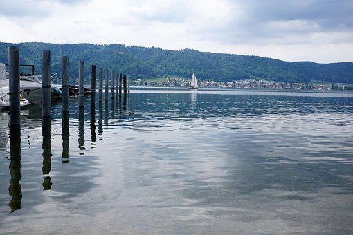 Ludwigshafen, Bodman, Lake Constance, Water, Nature