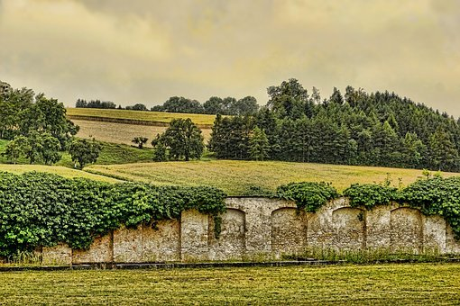 Nature, Wall, Stone, Old, Ivy, Background, Building