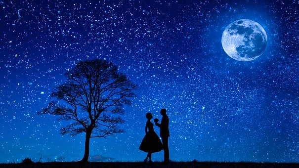 Lovers, Moon, Love, Couple, Flower, Proposal