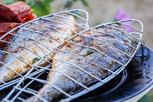 Fish, Sea Bream, Eat, Barbecue, Grill, Food, Court