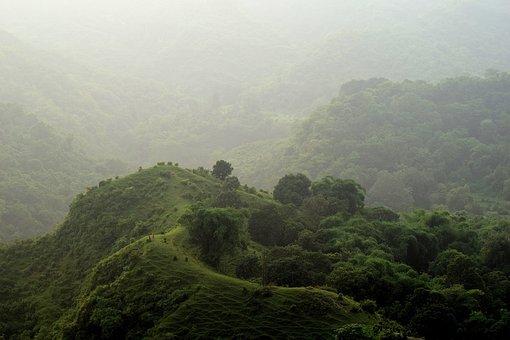 Landscape, Hills, Green, Nature, Trees, Grass, Forest