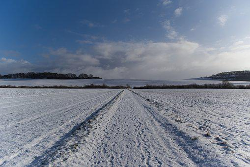 Winter, Cold, Snow, Frost, Wintry, Ice, Landscape