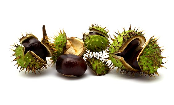 Chestnuts, Nuts, C, Chestnut, Autumn, Fruit, Eat, Snack
