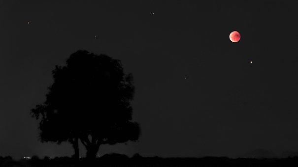 Blood Moon, Lunar Eclipse, Moon, Mars, Full Moon