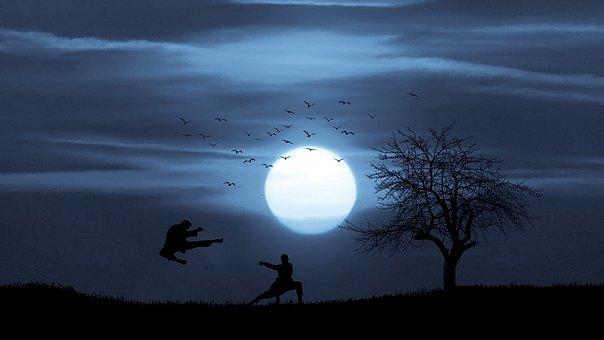 Action, Kung Fu, Moonlight, Night, Combat, Mountain