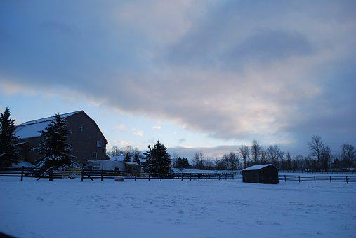Farm, Barn, Winter, Horses, Countryside, Nature, Scenic